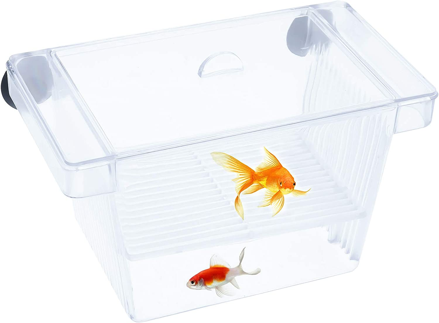 AUXSOUL Fish Hatchery, Transparent Fish Breeding Box with 2 Suction Cups for Breeding and Protecting Fry in The Aquarium or at Home