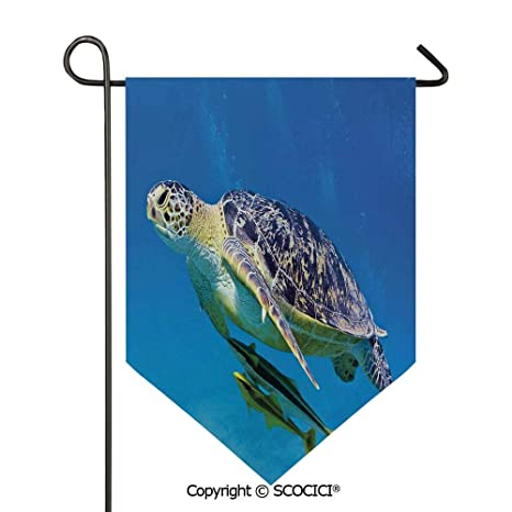 Easy Clean Durable Charming 28x40in Garden Flag Cute Angry Looking Sea Turtle Swimming With Remora Fishes Fauna Under The Sea Blue Yellow Brown Double Sided Printed Flag Pole Not Included Amazon In Garden Outdoors