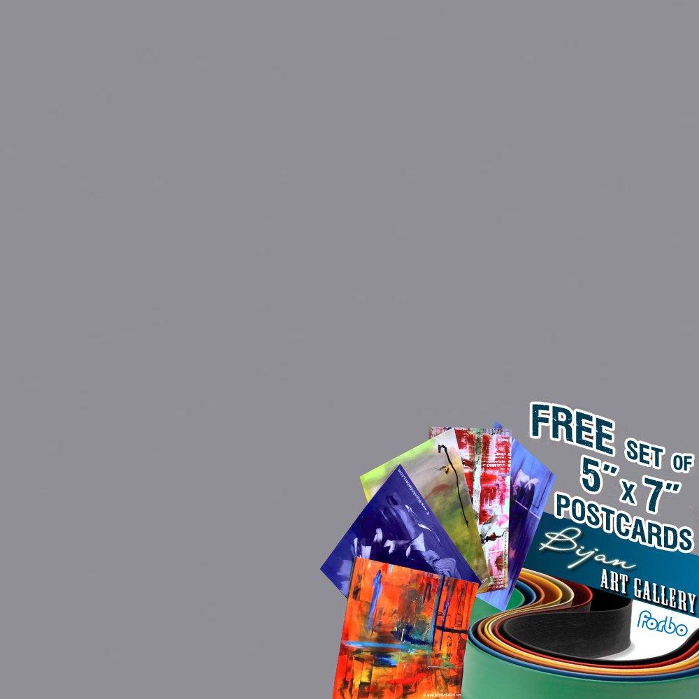 Forbo壁ベース高さ、1 / 8inゲージ[ボックスあたり120フィート] – 1で4ボックス|バンドルwith Exclusive Bijanアートギャラリーはがきとして無料ギフト|色: c05 Stormグレー  B07B64KY26