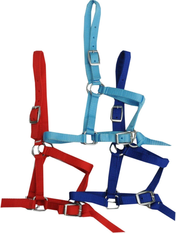 Amesbichler –Cabestro para Minis Hetty Mini Pony Potro, Madera Caballo Rot| Potro–Cabestro Shetty–Brida de Nylon con Cuerda para Corta