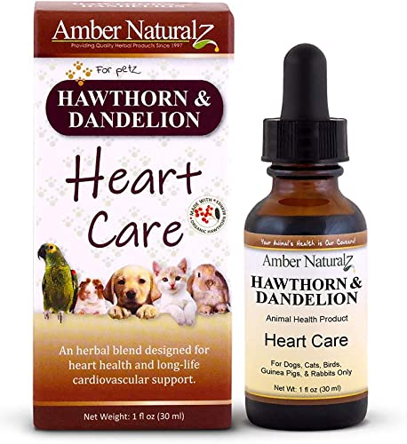 Amber NaturalZ – Hawthorn Dandelion – Heart Care – for Petz – 1 Ounce