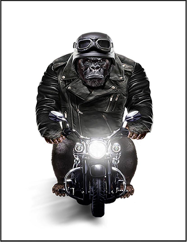 【FOX REPUBLIC】【ゴリラ バイク ヘルメット】 白キャンバス A3サイズ B077ZVCVBL A3|白キャンバス 白キャンバス A3