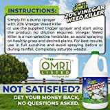 Green Gobbler Vinegar Weed & Grass Killer | Natural