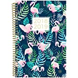 """bloom daily planners 2018-2019 Academic Year Day Planner - Monthly and Weekly Datebook/Calendar Book - Inspirational Dated Agenda Organizer - (August 2018 - July 2019) - 6"""" x 8.25"""" - Flamingos"""