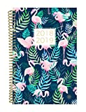 bloom daily planners 2018-2019 Academic Year Day Planner - Monthly and Weekly Datebook/Calendar Book - Inspirational Dated Agenda Organizer - (August 2018 - July 2019) - 6'' x 8.25'' - Flamingos