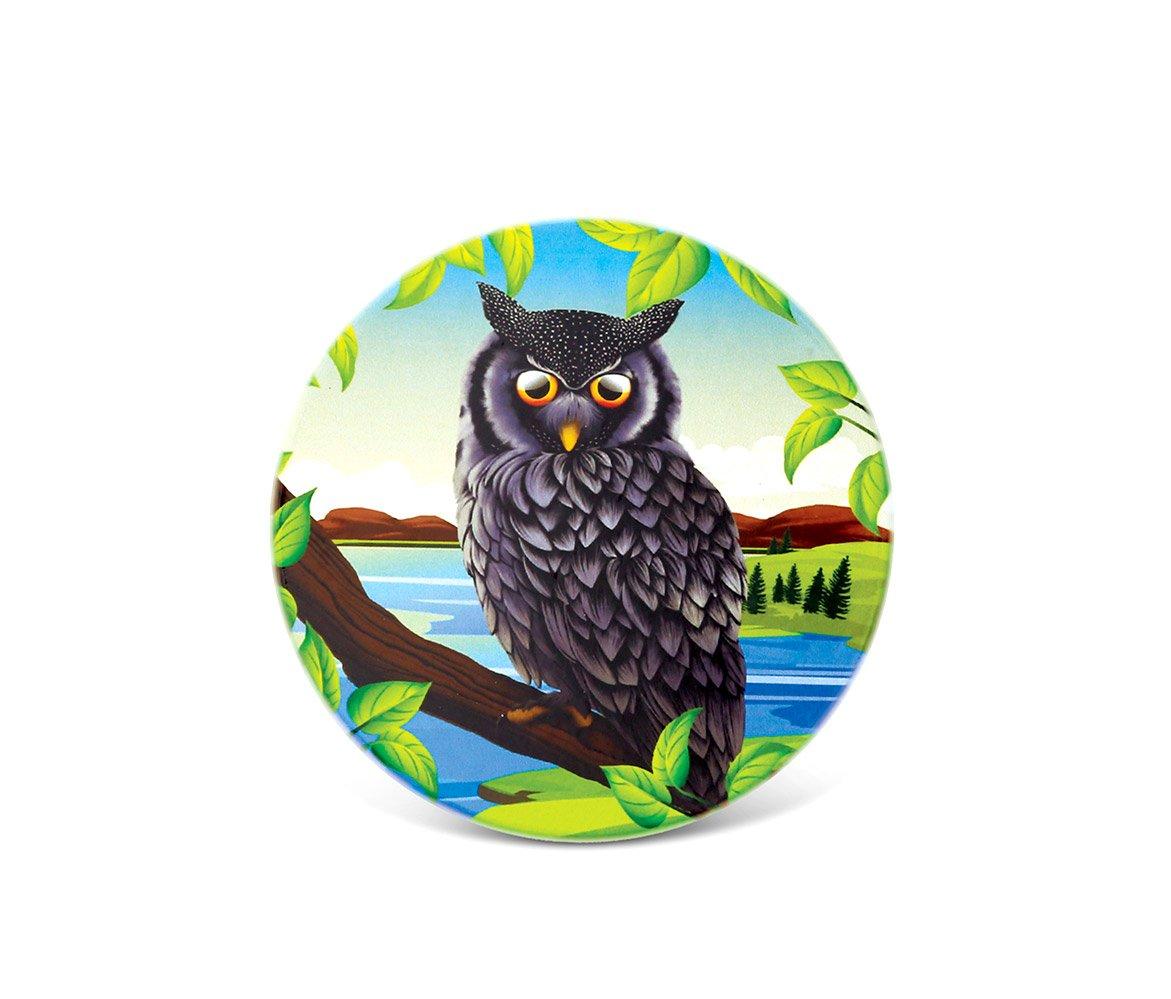 Cotaグローバル – グレーとブルーフクロウセラミックコースター – キッチン&ダイニング – 4インチ – Item # 9785   B076HB7JP7