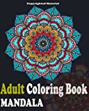 img - for Adult Coloring Books : Mandala Designs and Stress Relieving Patterns: Mandala For Adult Relaxation book / textbook / text book