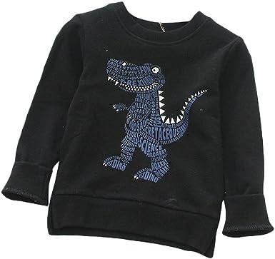Organic Kids Clothing Boys Organic Dinosaur sweatshirt 2 to 6 years Kids Dinosaur Sweater Toddler Outfit Toddler Top Organic Jumper