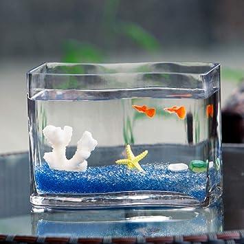 JIANGU Tanque de Peces de Vidrio en Forma de S, Cuenco de Peces de Colores de Moda de Escritorio, Mini Acuario, florero de Vidrio hidropónico: Amazon.es: ...