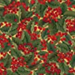 Entertaining with Caspari Continuous Gift Wrapping Paper, Christmas Berries Roll, 8-Foot, 1-Roll