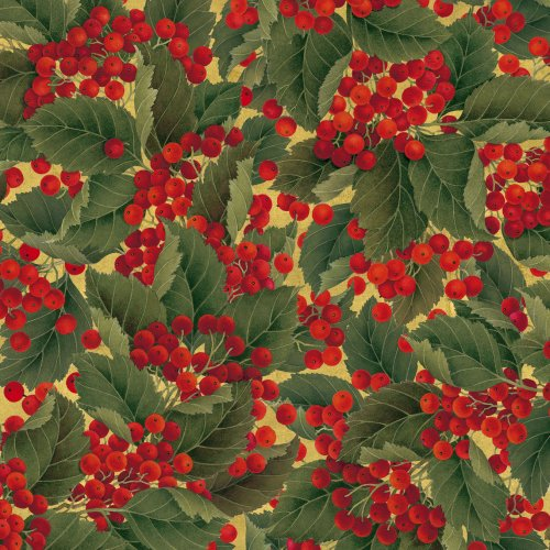 Caspari Entertaining with Continuous Gift Wrapping Paper, Christmas Berries Roll, 9-Foot, 1-Roll 9452RC
