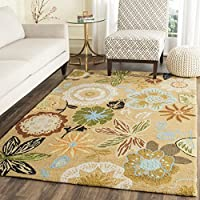 Safavieh Four Seasons Collection FRS472A Hand-Hooked Taupe and Multi Indoor/ Outdoor Area Rug (4 x 6)