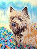 Caroline's Treasures 7238CHF Cairn Terrier Flag Canvas, Large, Multicolor Review