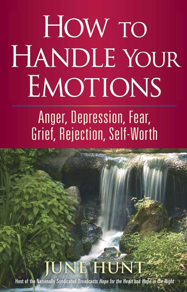 How Handle Your Emotions Depression product image