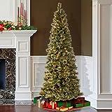 National Tree 7.5 Foot Glittery Bristle Pine Slim Tree with 600 Soft White LED Lights (GB3-319-75)