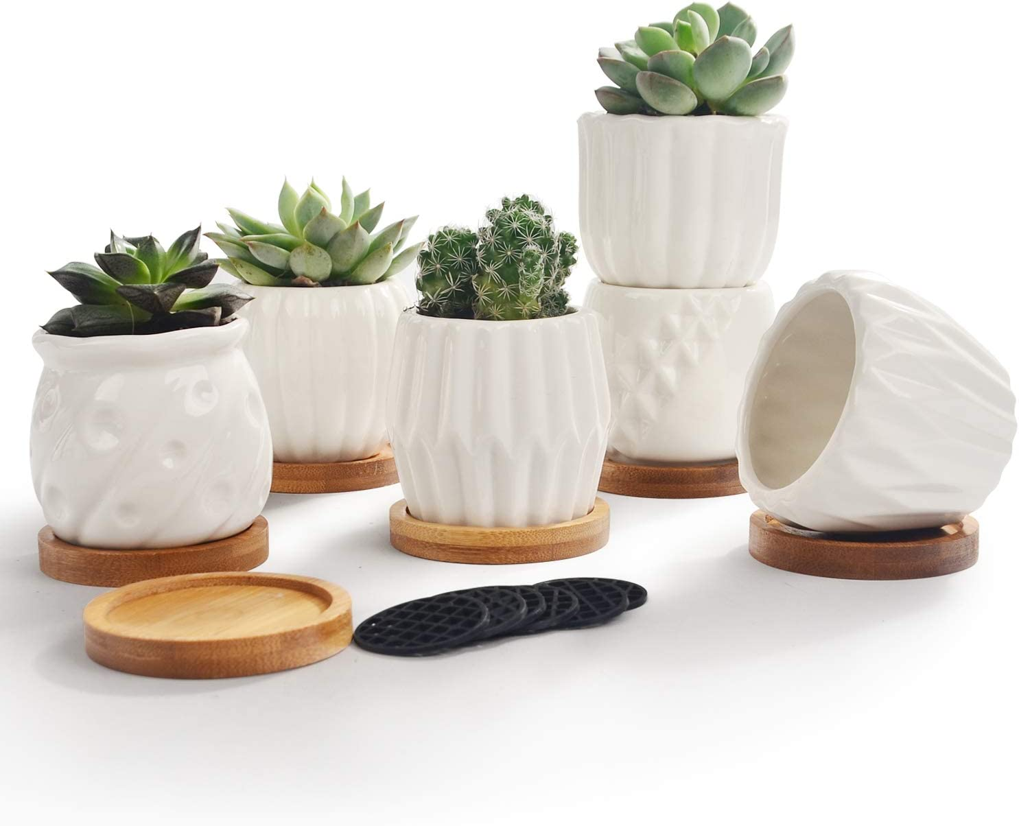 Set of 6 White Simple Porcelain Planters for Small Plant Pots Succulent Cactus with Drainage and Saucer for Home Office Decoration Gift(White Stripes)