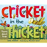 Image result for cricket in a thicket