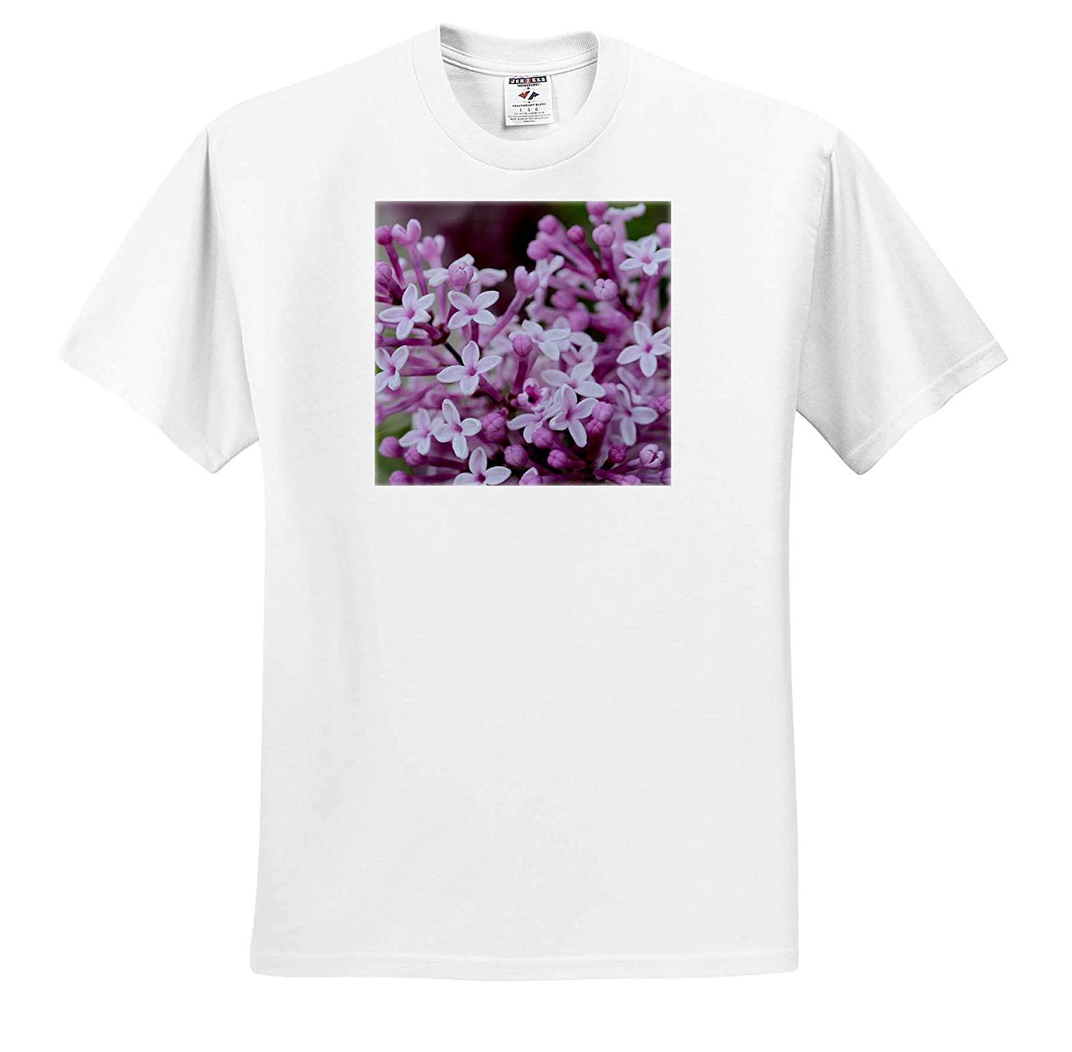 Flowers - Adult T-Shirt XL ts/_309935 3dRose Stamp City Macro Photograph of a Cluster of Pink Lilac Flowers