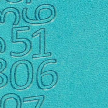Exacompta Semainier de poche  SAS 17 Winner 17246E Agenda broch/é Septembre 2019 /à Ao/ût 2020 semaine sur 1 page avec une grille horizontale et une page de note 9 x 17,5 cm coloris al/éatoire