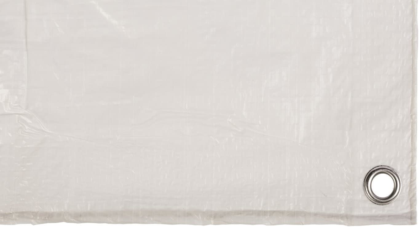 Toldo reforzado gramaje 70 grs, 3 x 2 m, color blanco