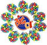 1000 Pk Big Ol' Ball Toyz 5.5 cm Crush Proof Fun Ball Pit Balls Phalates Free