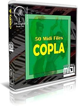 Copla - Pendrive USB OTG para Teclados Midi, PC, Móvil ...