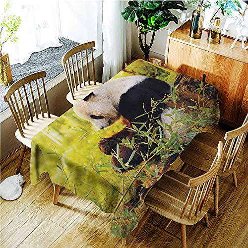 (TT.HOME Elastic Tablecloth Rectangular,Panda Big Panda Sitting Forest Eating Bamboo Tree Trunk Foliage Wilderness Picture Print,Fashions Rectangular,W52x70L,Green Black)