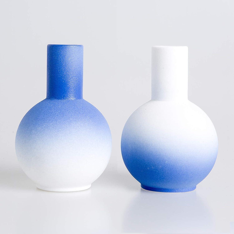 Skagele Ceramic Vase White Blue Small Vases, 2 Vase Set Modern Home Decoration Vase Book Shelf Bedroom Vase Decor for Living Room
