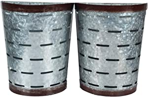 Kingbuy Galvanized Metal Wall Planter, Farmhouse Style Hanging Wall Vase Planters (2) for Succulents or Herbs,Tin Style Bucket for Country Rustic Home Wall Decor. (Style 3)