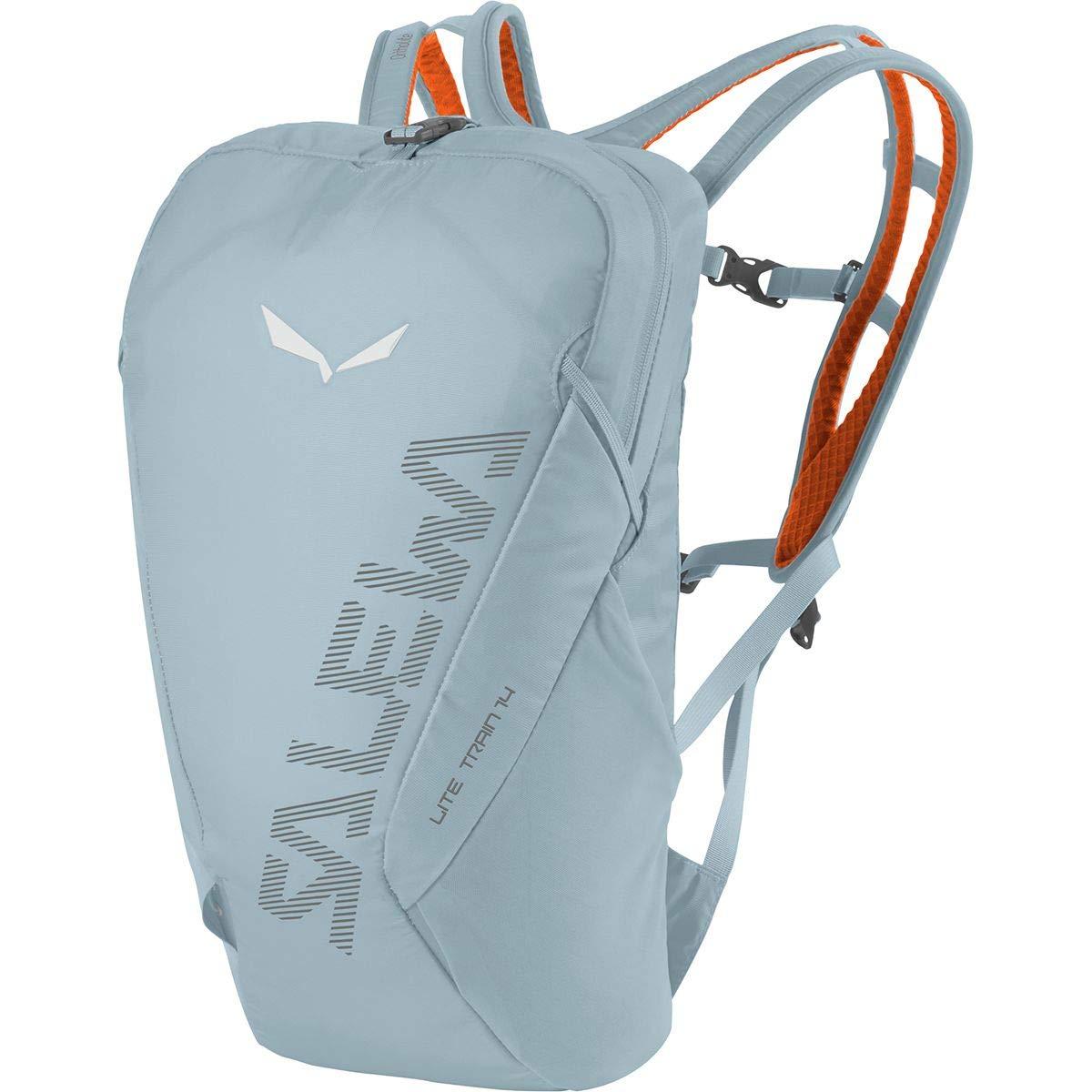[サレワ] メンズ バックパックリュックサック Lite Train 14L Backpack [並行輸入品] No-Size  B07QRRH8FH