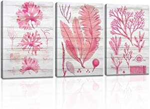 DekHome 3 Pieces Vintage Coastal Canvas Wall Art Pink Coral Evolution Painting Prints Seaweed with Wood Background Picture Framed Stretched Framed Posters for Bedroom Nautical Room Bathroom Spa Home Office Decor 16x24inchx3pcs