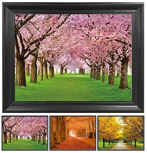 (Autumn Changing Tree Leaves 3D Poster Wall Art Decor Framed Print | 14.5x18.5 | Lenticular Posters & Pictures | Memorabilia Gifts for Guys & Girls Bedroom | Beautiful Nature Scene of Spring Colors)