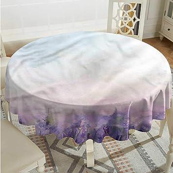 Amazon.com: Tim1Beve - Mantel de lavanda para mesa de cocina ...