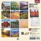 Arizona, Wild & Scenic 2017 Mini 7x7