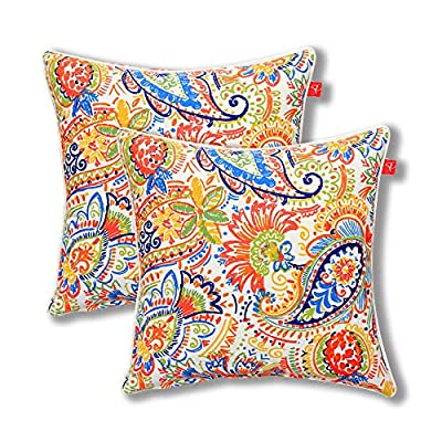 Pcinfuns Set of 2 Patio Indoor/Outdoor All Weather Decorative Throw Pillow Cover Cushion Case for Replacement 18
