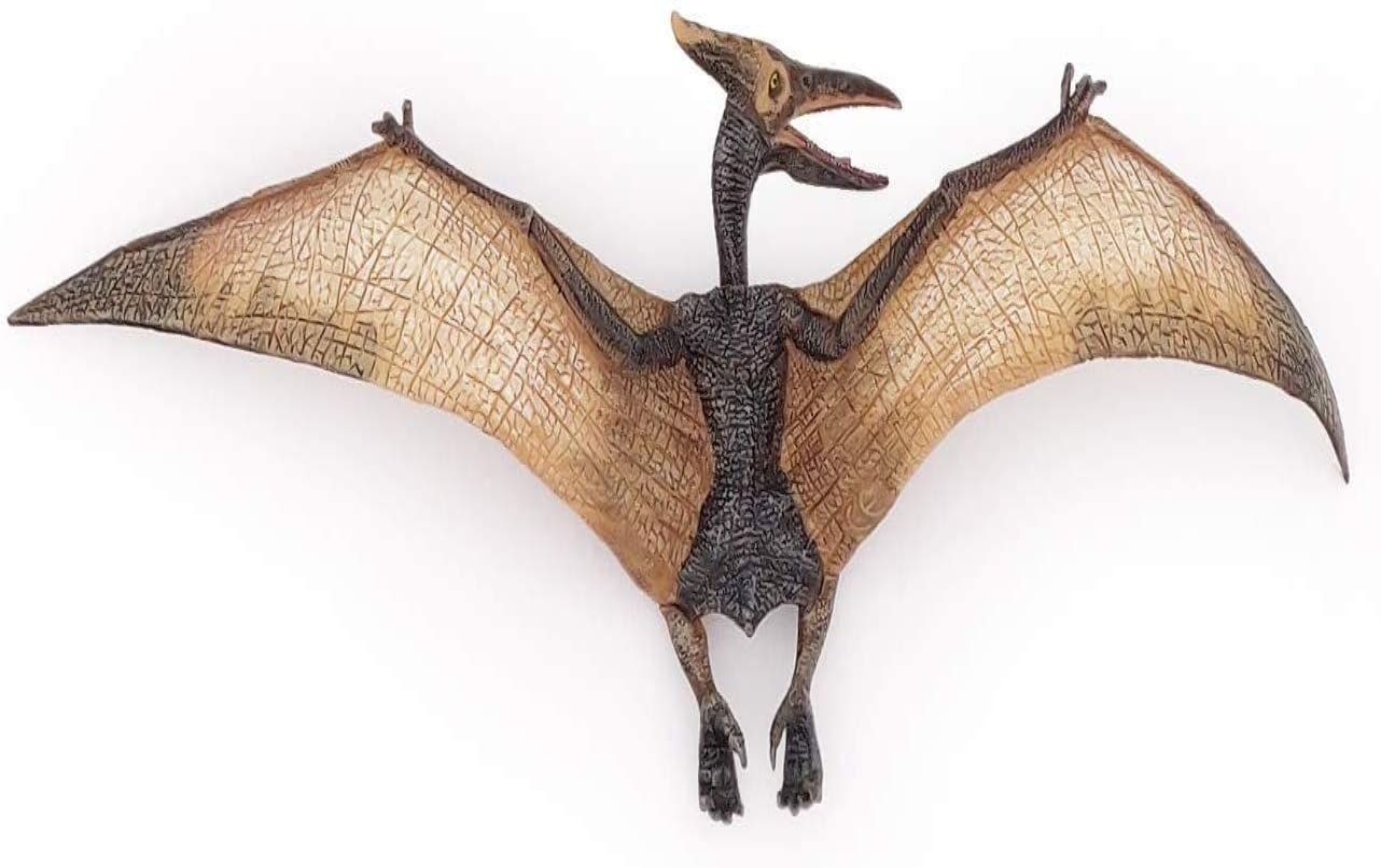 Pterodactyl Dinosaur action figure toy model Flying prehistoric bird figurine