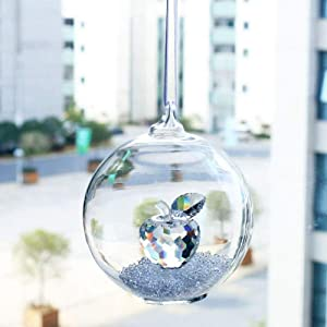 Buycrafty Hanging Glass Globe Dome Ornament Clear Crystal Glass Apple Display Terrarium Vase