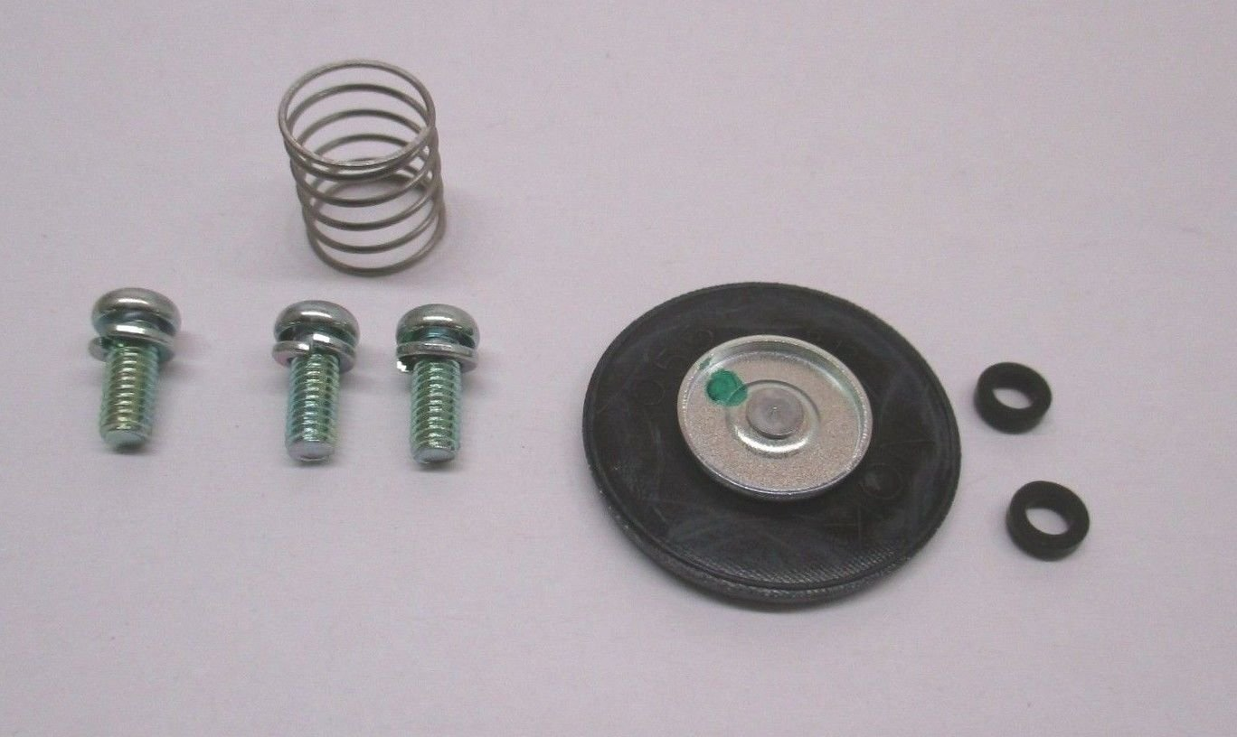 Kohler OEM 24 757 08-S Replacement kit, Repair Acc Pump