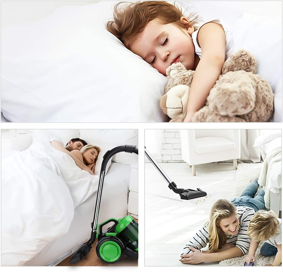 VINGO Aspirateur 900 Watt, filtre HEPA 12, brosse de sol 2en1, flexible 360 °, aspirateur 3L aspirateur cyclone sans sac rouge [classe énergétique A] Vert
