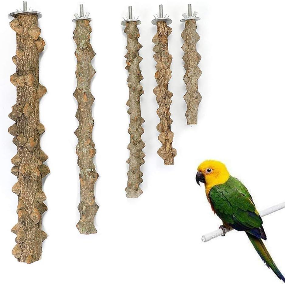 Perchas Naturales para Pájaros, 5 Piezas Perchas Naturales de Aves, Perchas de Loros Naturales, Pájaro Soporte de Madera Natural, para Accesorios de Percha de Jaula de Pájaros para Loros (10-30 cm)