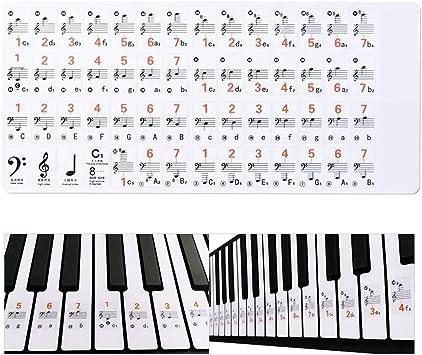 Dr.Lefran Pegatinas de Teclado o Piano, 37,49,61,88 Teclado ...