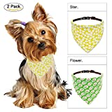 CarolLife Puppy Bandana, 2 Pack Bandana Pet Scarf Hankie Adjustable Scarves Accessories for Medium Cats and Dogs