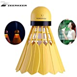 ZEERKEER USB Badminton Humidifier Mini Humidifier 12 Hours humidification Air Diffuser Hydrating Spray Silent Operation for Home Office Baby Bedroom Car (Yellow)