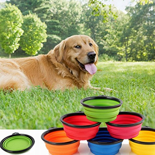 Bazaar-Collapsible-Pet-Travel-Bowl-Foldable-Dog-Compact-Feeding-Dish-Cat-Silicone-Lightweight-Bowl