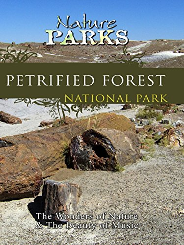 Nature Parks - Petrified Forest, Arizona