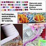 Fipart 5D DIY Diamond Painting Cross Stitch Craft