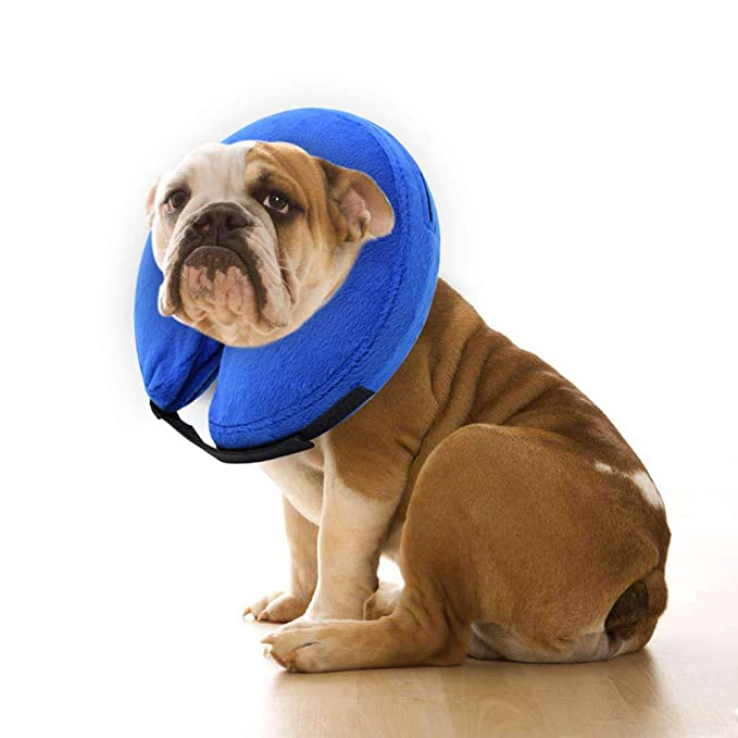 E-KONG - Cono de Perro después de la cirugía, Collar Hinchable ...