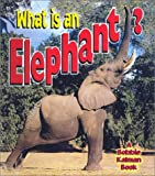 What Is an Elephant?, John Crossingham, 0613508475