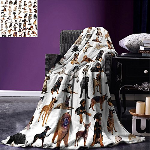 (smallbeefly Dog Lover Decor Queen Size Digital Printing Blanket Picture with Purebred Dogs Australian Sheepdog Belgian Boxer Italian Mastiff Pedigree Summer Quilt Comforter)