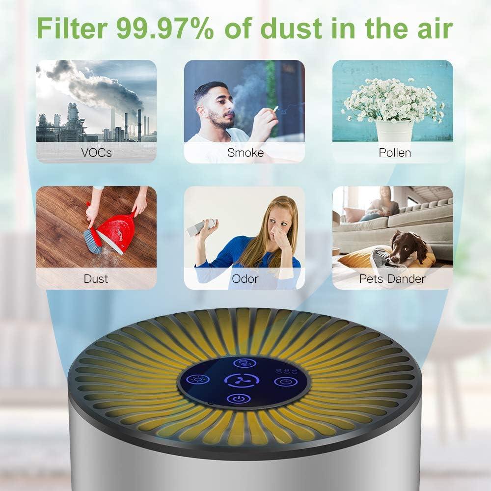 Duomishu Purificador de Aire para Hogar Oficina 4 en 1 Filtro HEPA ...
